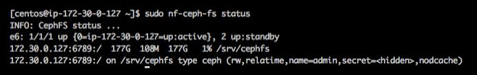 nf-ceph-fs status command